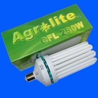 AGROLITE CFL 250W - Croissance / 6400K