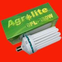 AGROLITE CFL 250W - Floraison / 2700K